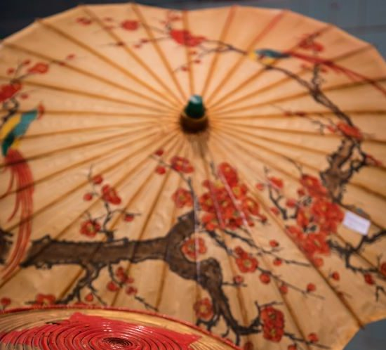 Aziatische paraplu